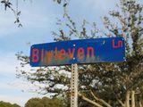 Blyleven_ln_2